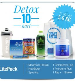 Jual Smart Detox Lite Pack Synergy HP 0813 8154 6943